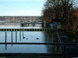 berlin wannsee-havel-DSCF0007