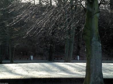 berlin wannsee-havel-DSCF0011