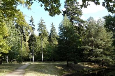 branitz landschaftspark -P1030634