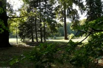 branitz landschaftspark -P1030635