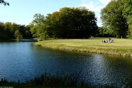 branitz landschaftspark -P1030641