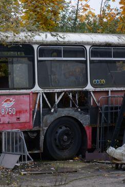 alte Busse-foto gielow 06