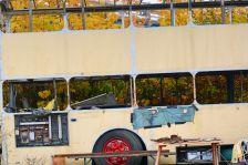 alte Busse-foto gielow 08