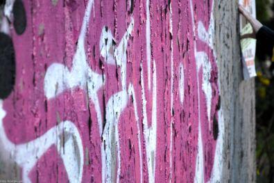 springcolors 5