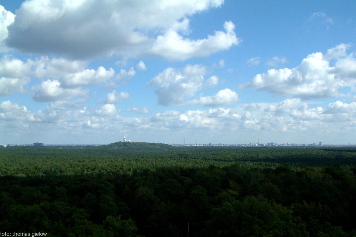 grunewaldturm-03