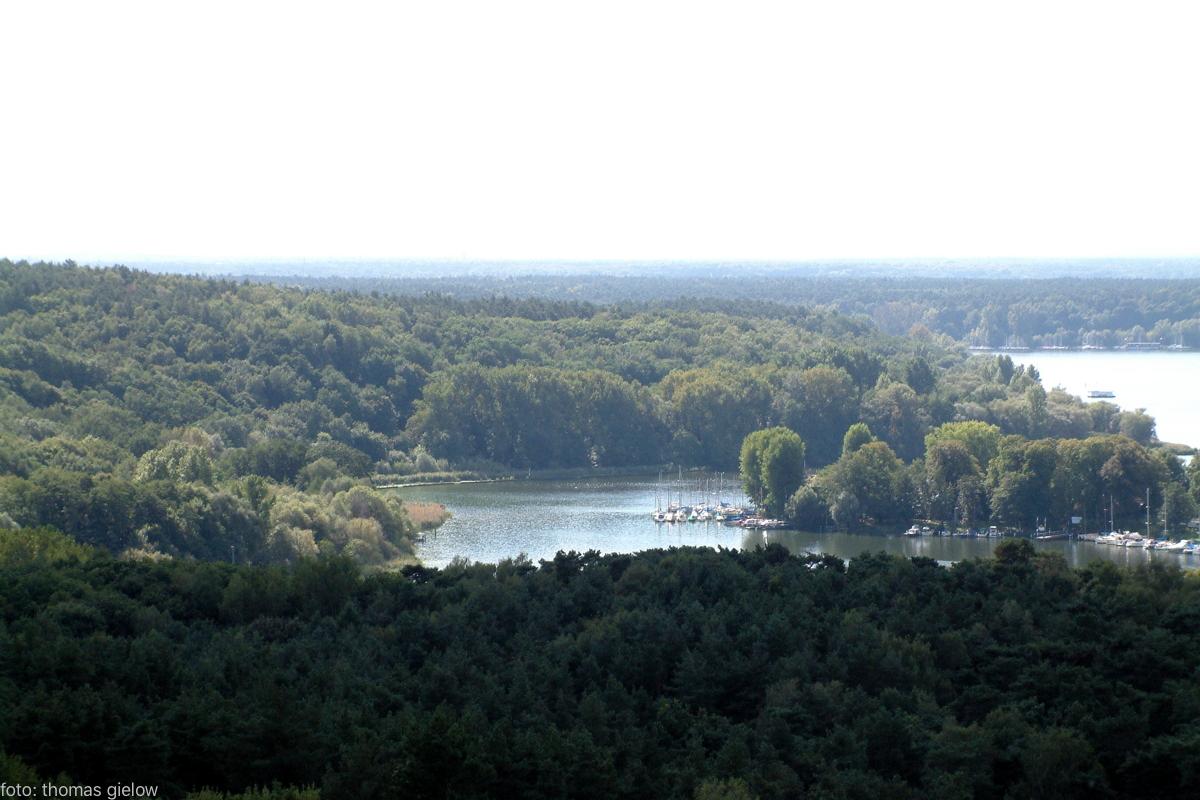 grunewaldturm-13