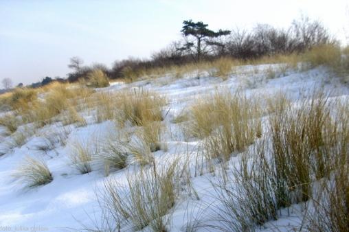 winter-warnemuende-12