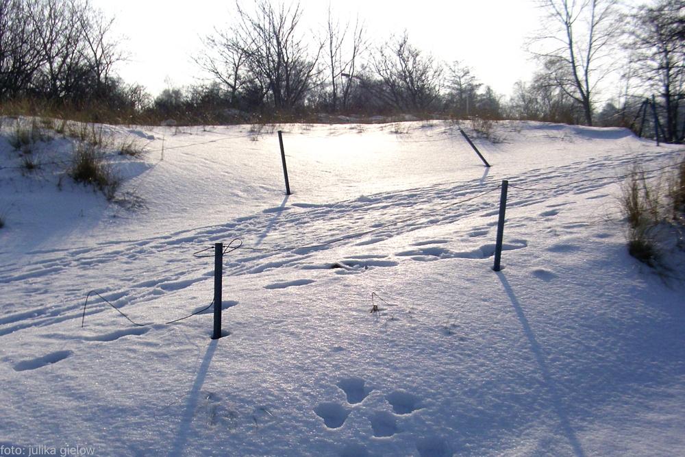winter-warnemuende-13