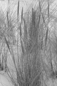 winter-warnemuende-17