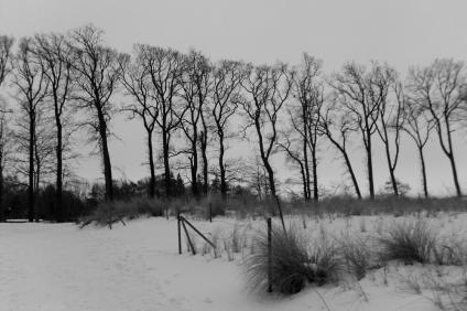 winter-warnemuende-19
