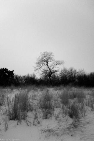winter-warnemuende-24