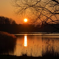 Sonnenuntergang am Öjendorfer See